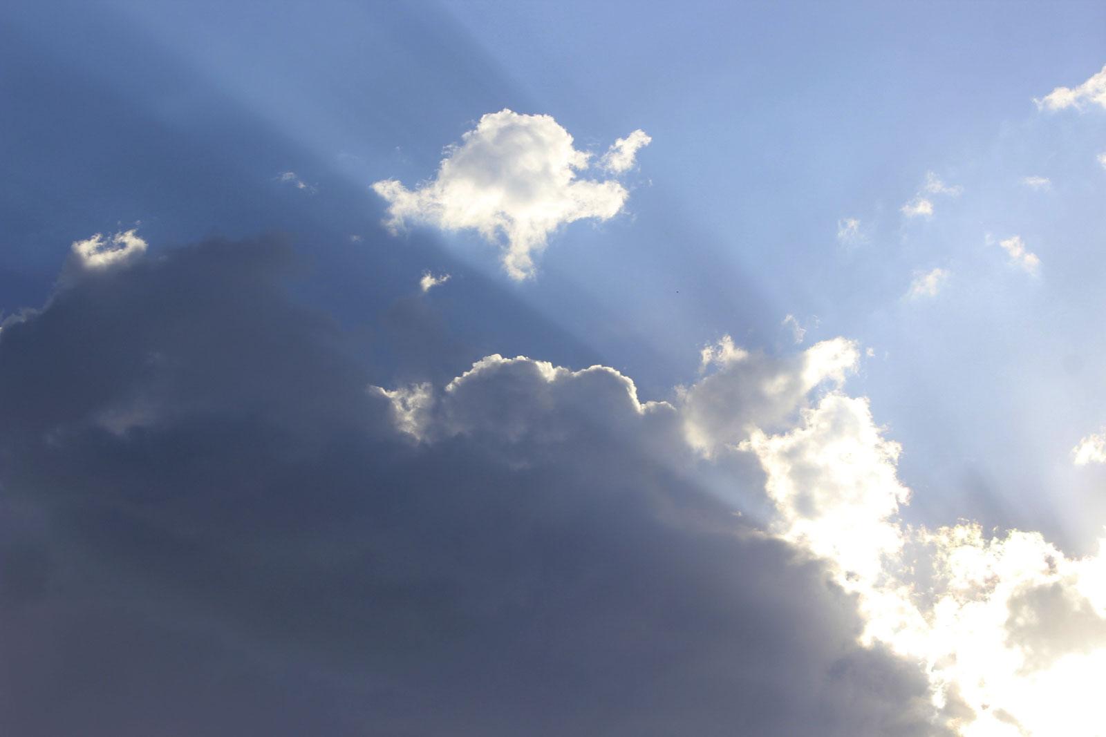 Bush clouds