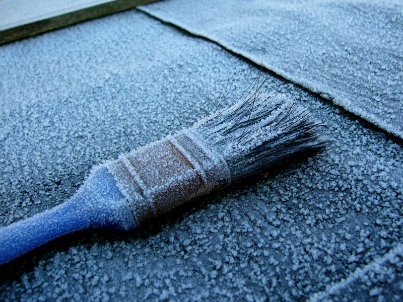 Frosty paintbrush