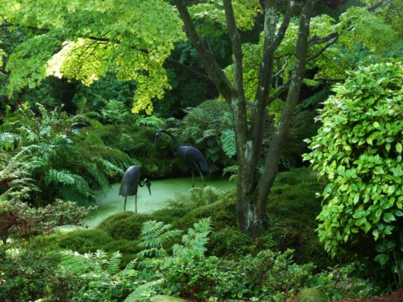 Japanese Garden #5