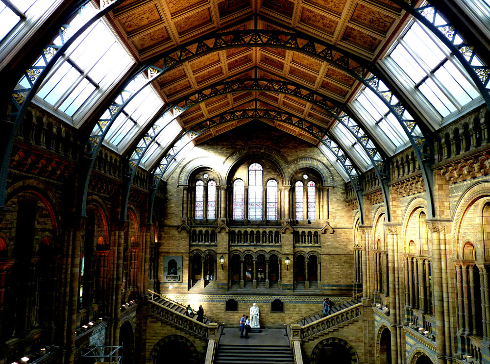 Central Hall, Natural History Museum