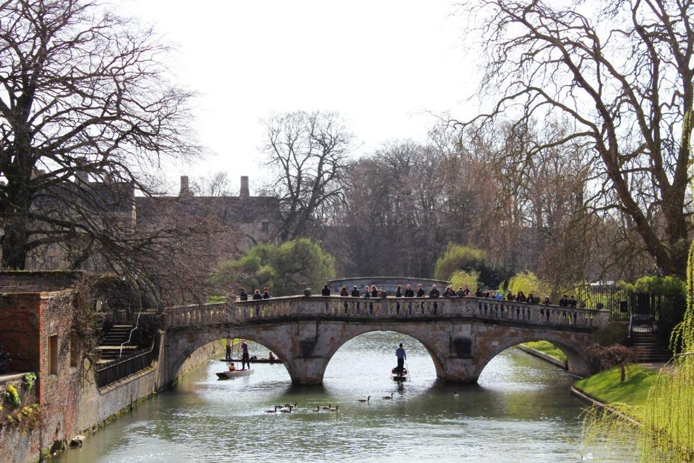 Bridge, punting
