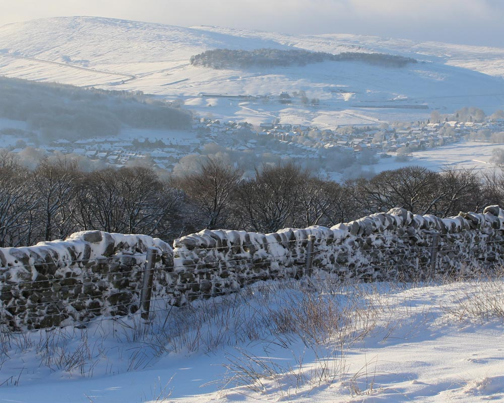 Snowy Buxton