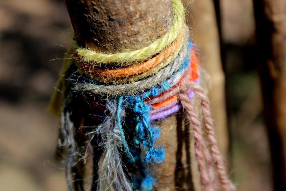 Wooly wood